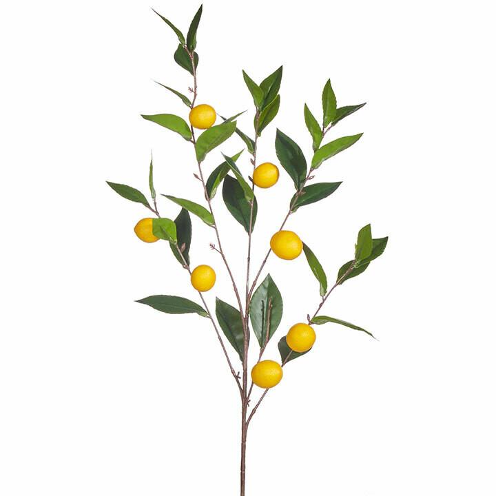 "36"" Lemon Spray"