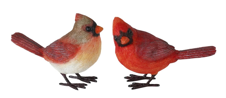 """4"""" Cardinal"""