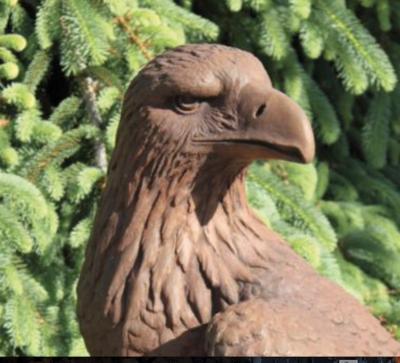 """33"""" Eagle  (R86)"""