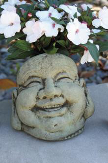 "7"" Laughing Hoi Toi Face (R91)"