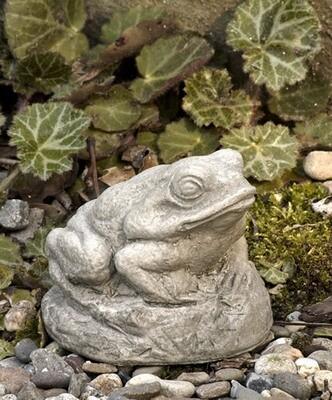 Tiny Frog EM