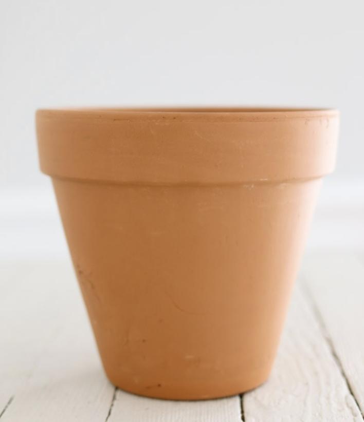 Terra Cotta Standard Clay Pot - 8 inch