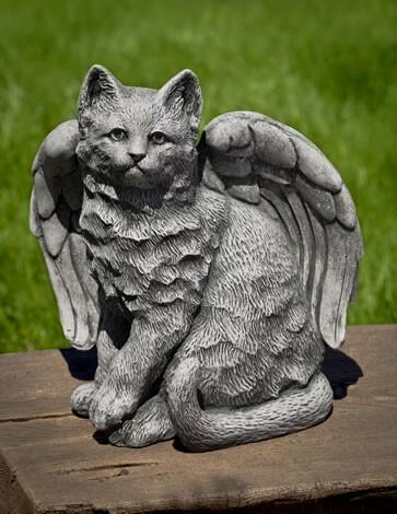 Angel Kitty - TR