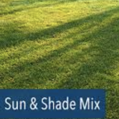 Sun and Shade Grass Seed - 5 lb