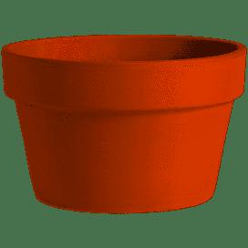 """Azalea 10"""" Terra Cotta Clay Pot"""