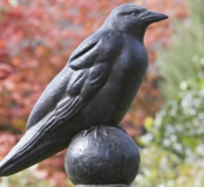 Raven (AS)