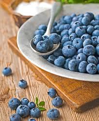 Blueberry Patriot 2 gal.