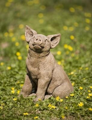 Perky Pig (BR)