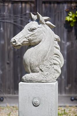 Champion Horse Head