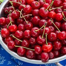 Cherry Montmorency 7 gal.