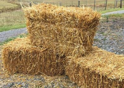 "Hay Bale 16""x20""x36"""