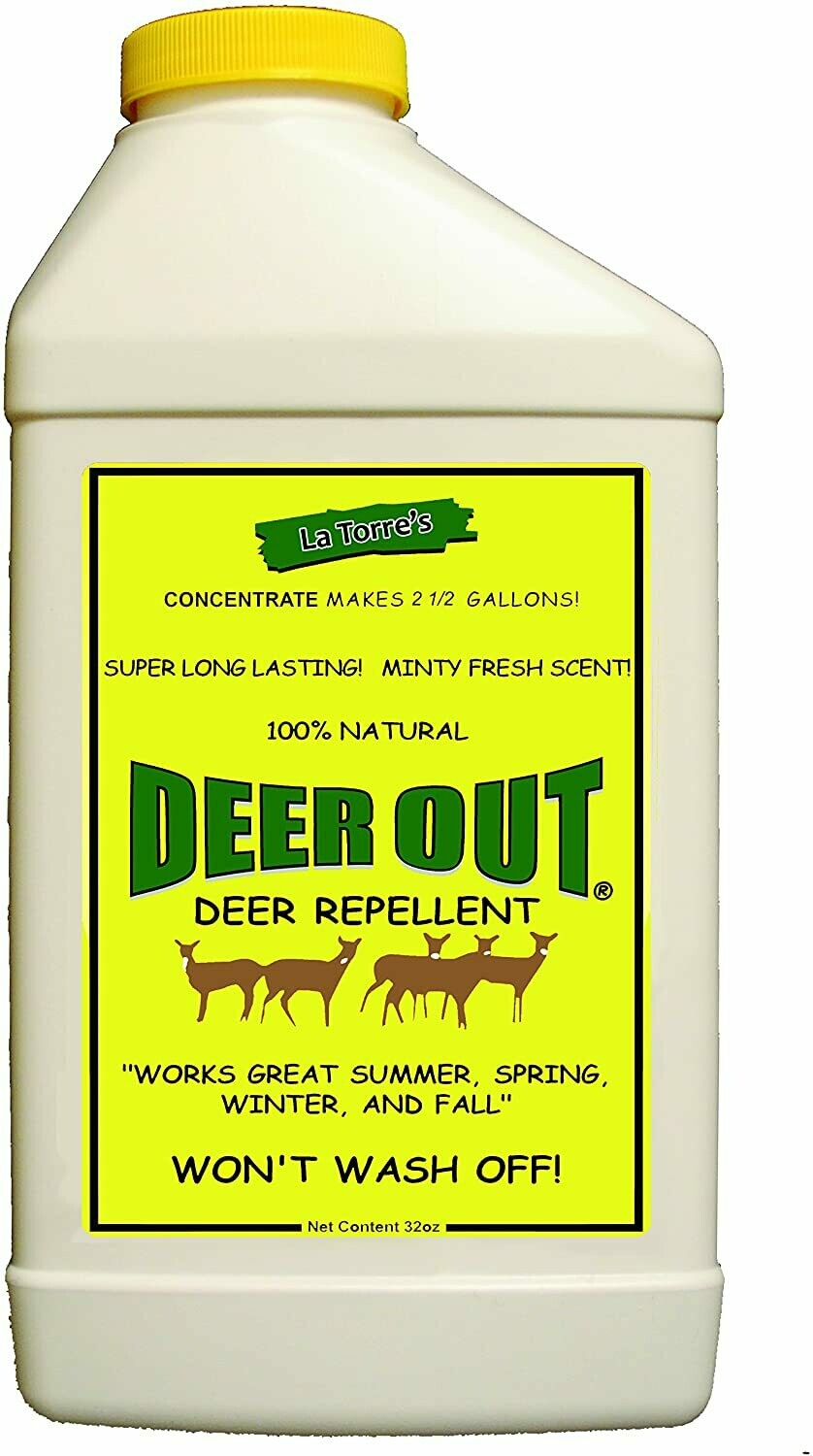 Deer Out Concentrate -  32 oz