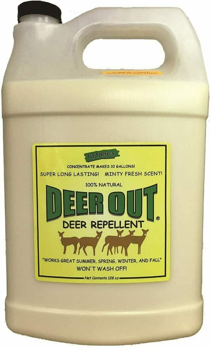 Deer Out Concentrate 1 Gal