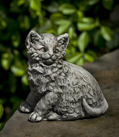 Cutie Kitty - TR