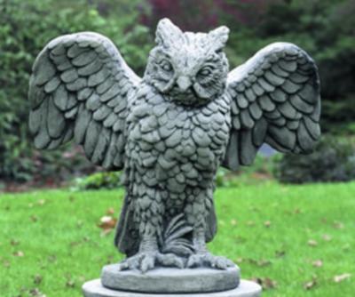 Soaring Owl (FN)
