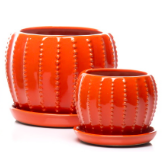 Ball Cactus w/ Attached Saucer, Poppy - Large