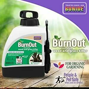 Burn Out 1.33 gal. RTU