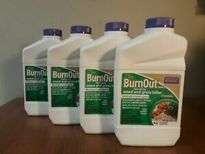 Burn Out 32 oz. concentrate