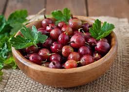 Ribes uva-crispa 'Hinnonmäki Röd' 3 gal