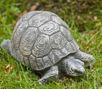 Small Turtle (BR)