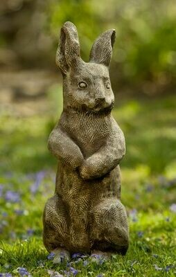 Father Rabbit (BR)