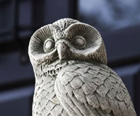 Night Owl (AL)