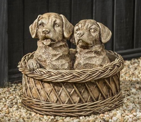Basket Cases (BR)