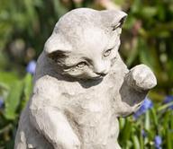 Playful Kitten (GS)