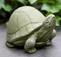 Box Turtle (EM)