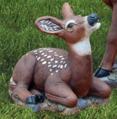 Laydown Fawn (DS)