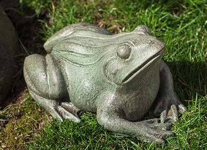 Woodland Frog (CB)