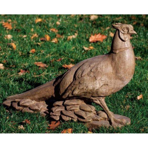 Pheasant (FR)