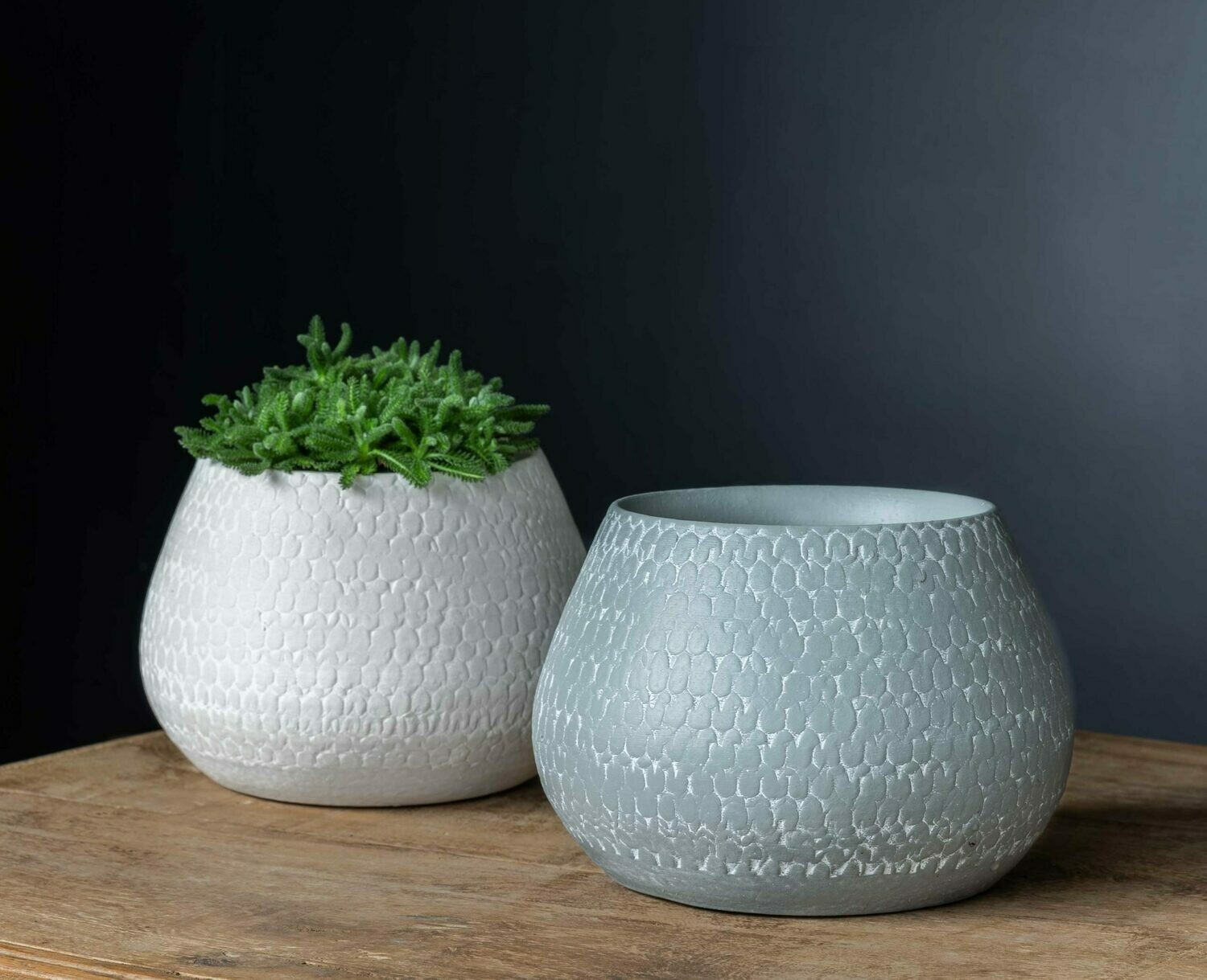 Scalloped Planter - Grey