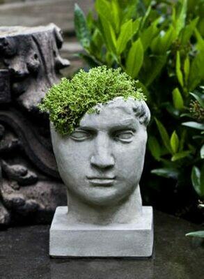 Aurelius Planter