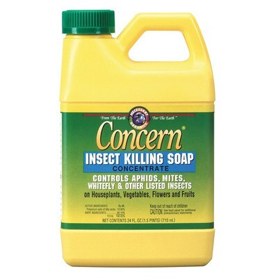 Insect Killing Soap Concentrate Concern