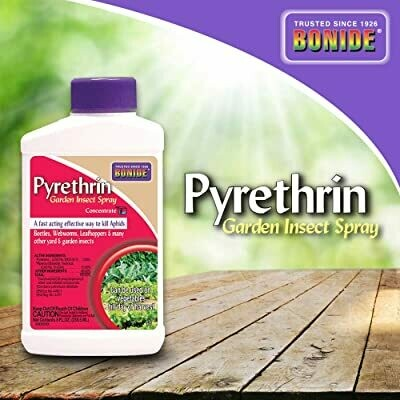 Pyrethrin Garden Insect Spray Concentrate (8 fl oz)