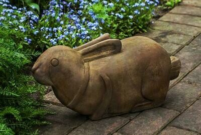 Thai Bunny (PN)