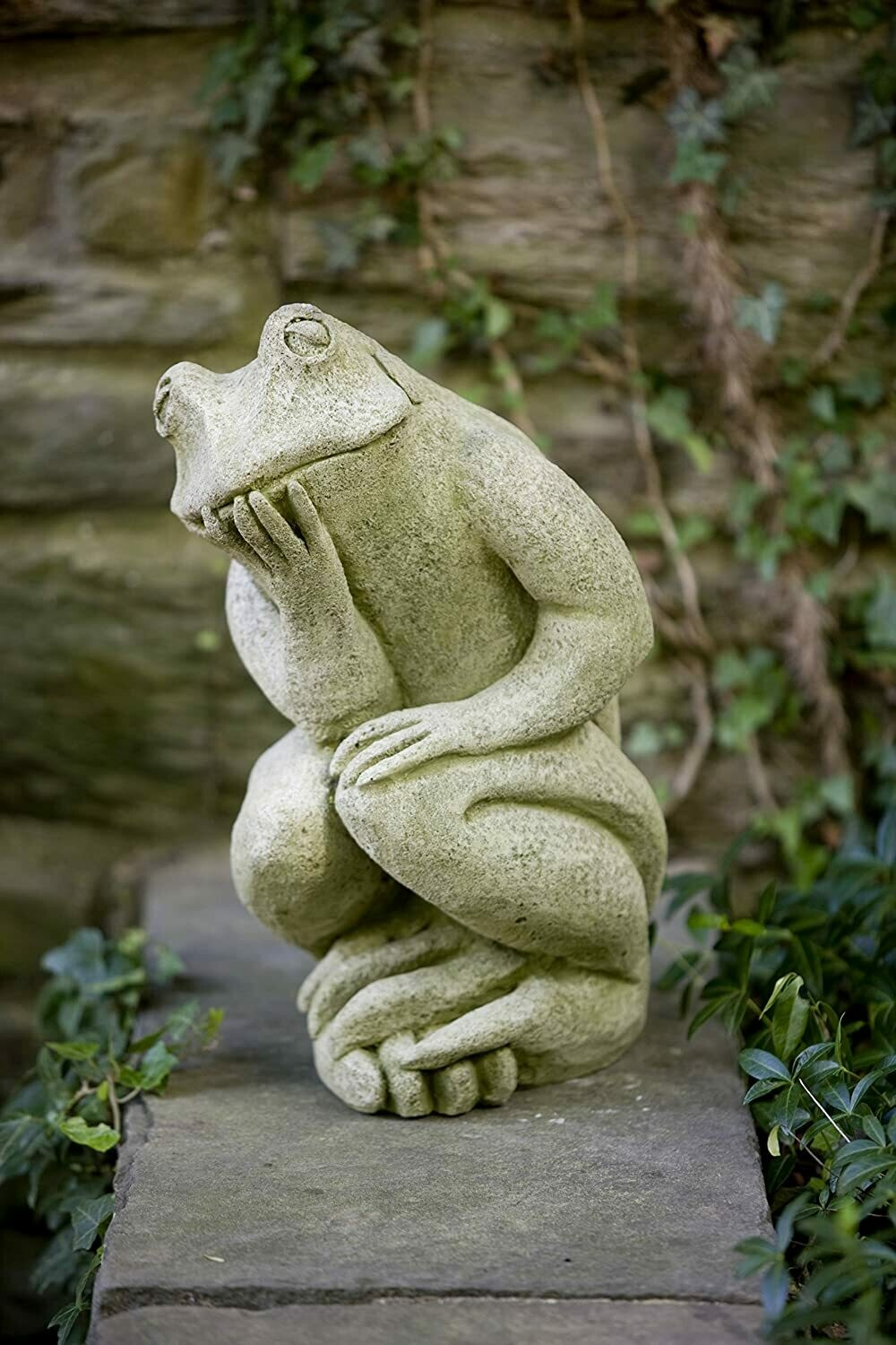 Thinking Frog (GS)