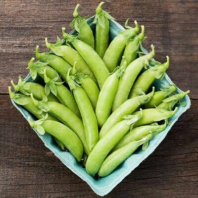 Pea Sugar Snap Cascadia Seed