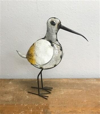 Godwit Bird