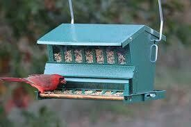Absolute Squirrel-Resistant Bird Feeder