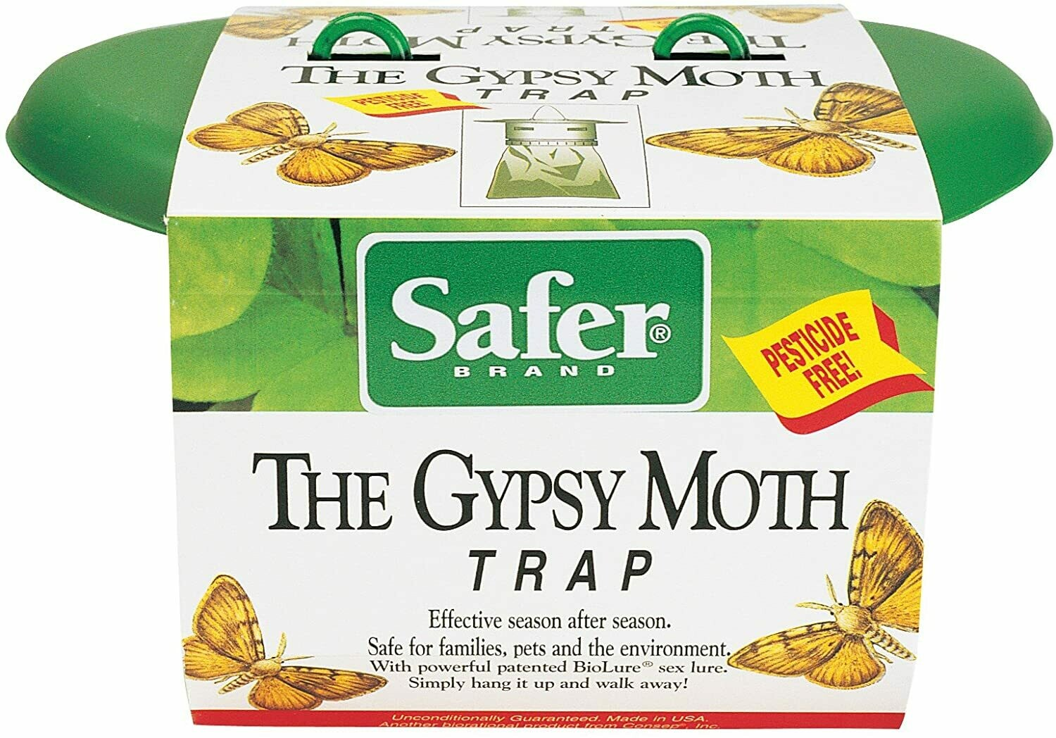 Gypsy Moth Trap