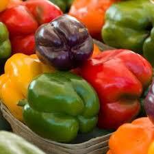 Pepper Sweet Baby Bell Organic Seed