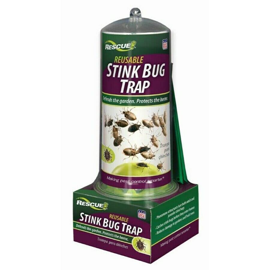 Stink Bug Trap