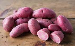 Potato 'Amarosa' Bulbs
