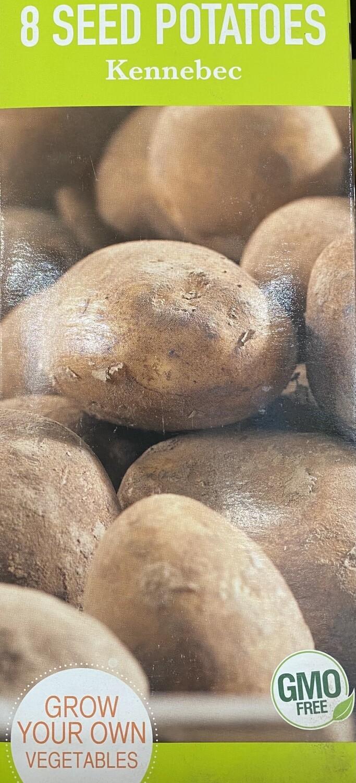 Potato 'Kennebec' Seed Non-GMO