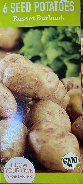 Potato 'Russet Burbank' Seed Non-GMO