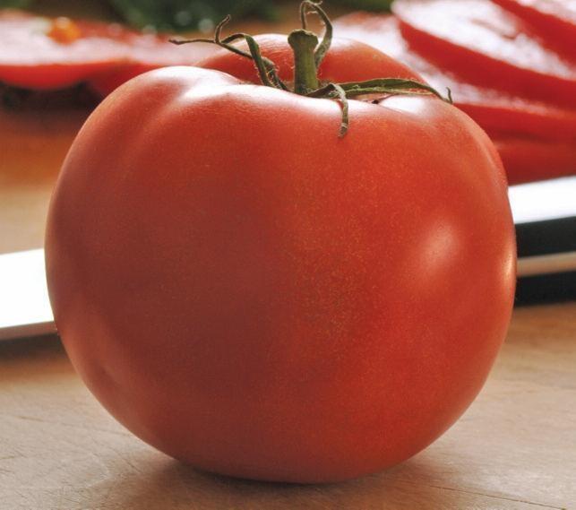 Tomato 'Homeslice' (Slicer) 3 gal
