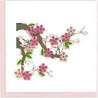 Quilling Cards - cherry blossom