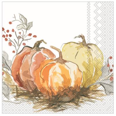 Cocktail Napkins - Painted Pumpkins